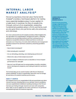 Internal Labor Market Analysis®